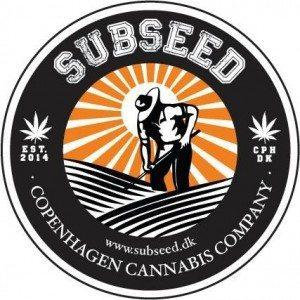 Med autoblomstrende skunk frø, kan selv en uerfaren dyrker, gro cannabis.