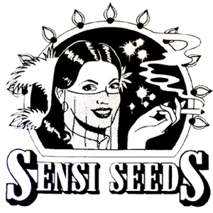 Sensi seeds cannabis frø