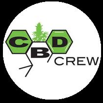CBD crew cannabis frø