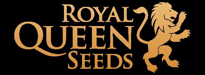 Royal queen seeds cannabis frø